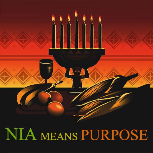 nia-purpose